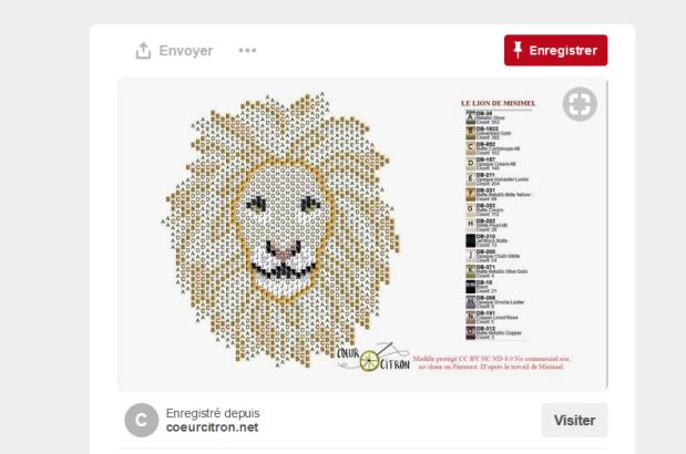lion pinterest.PNG