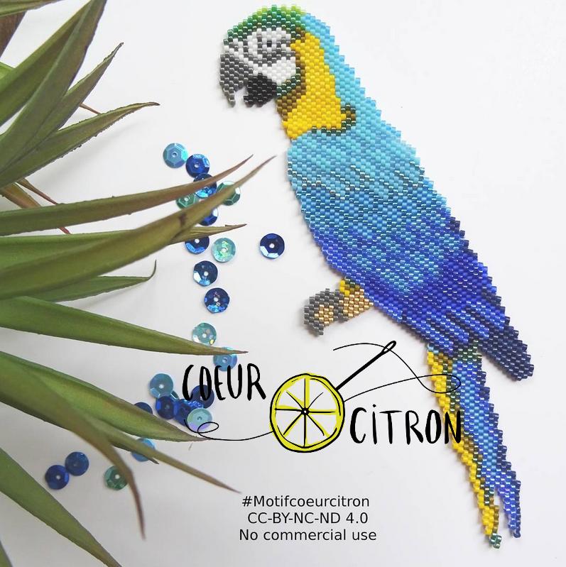 perroquet.PNG