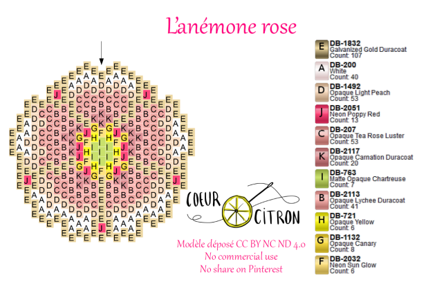anémone site.PNG