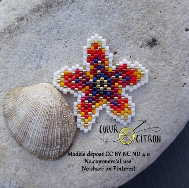 étoile de mer.PNG