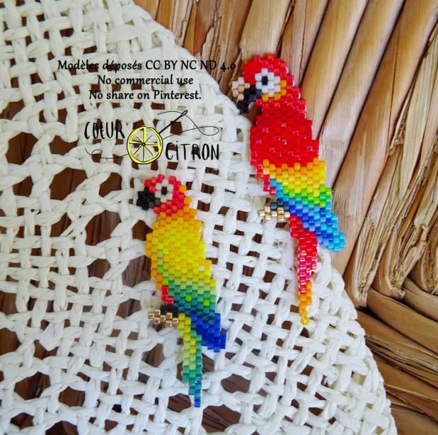 perroquets coeur citron.PNG