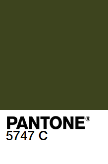 Pantone vert sapin