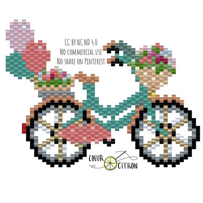 vélo.PNG